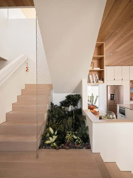 indoor garden next to a staircase
